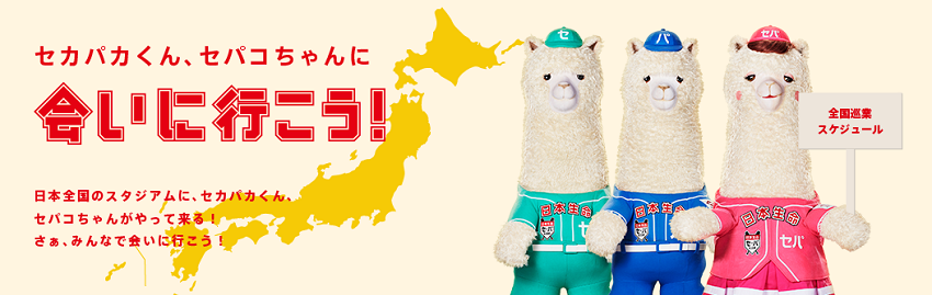 6月7日火曜日の横浜戦にアルパカが来るよ