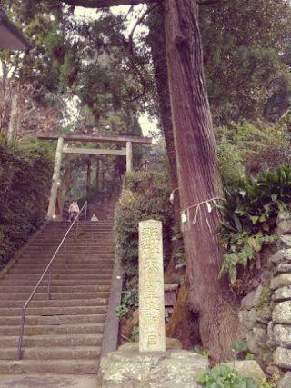 2017年の初詣:伊野天照皇大神宮